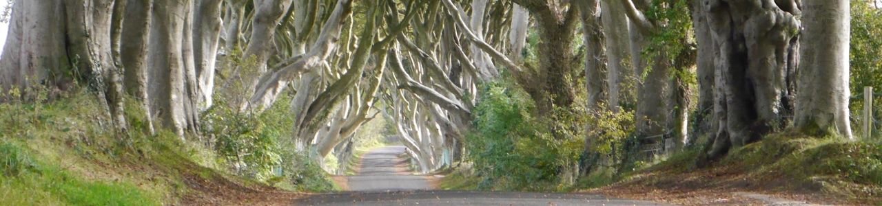Irlande du Nord : A la découverte des Royaumes de Game of Thrones (3)