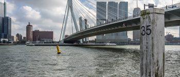 Prachting, Rotterdam