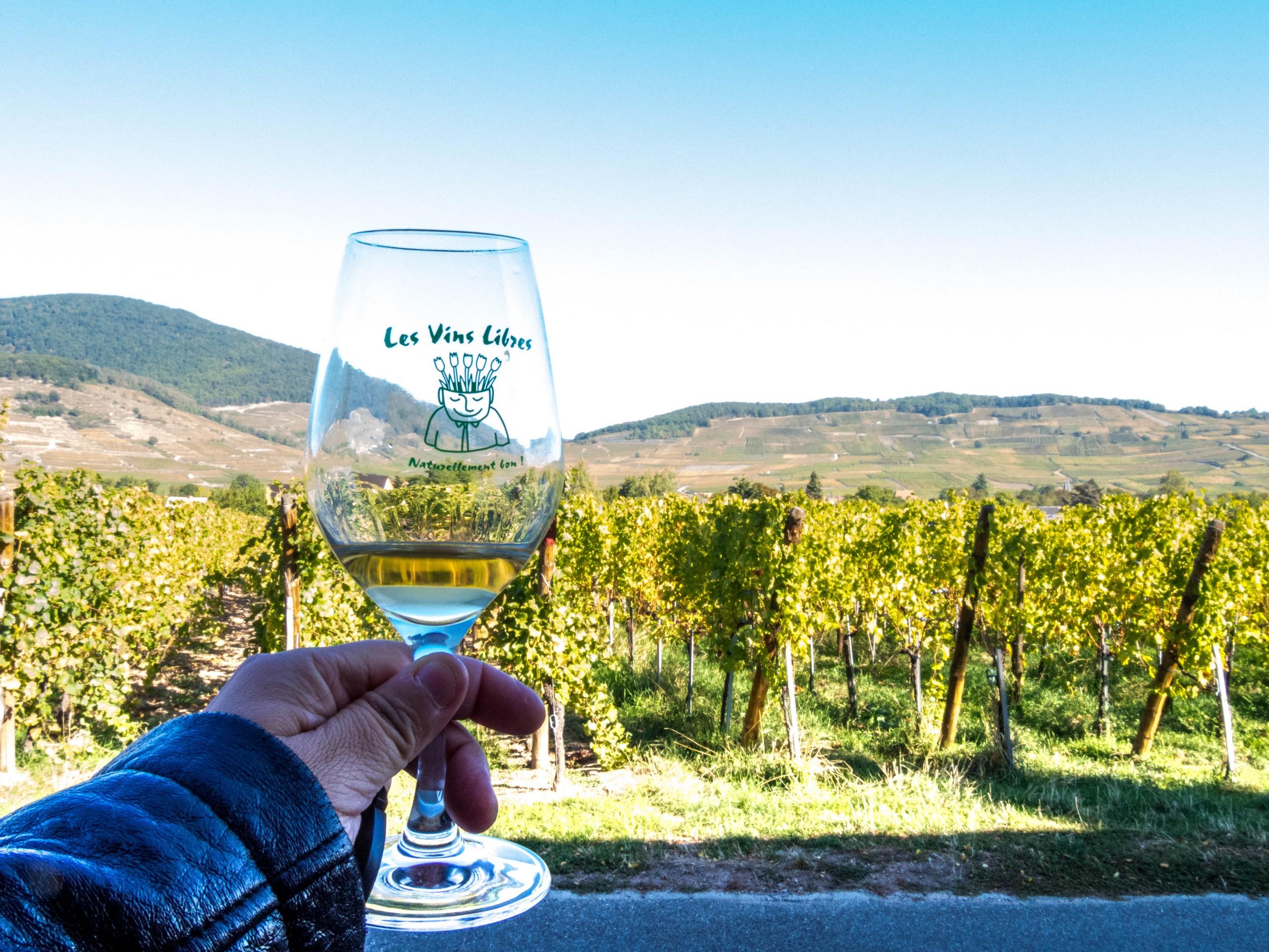 Vins d'Alsace : Christian Binner